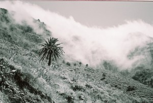 gomera valley